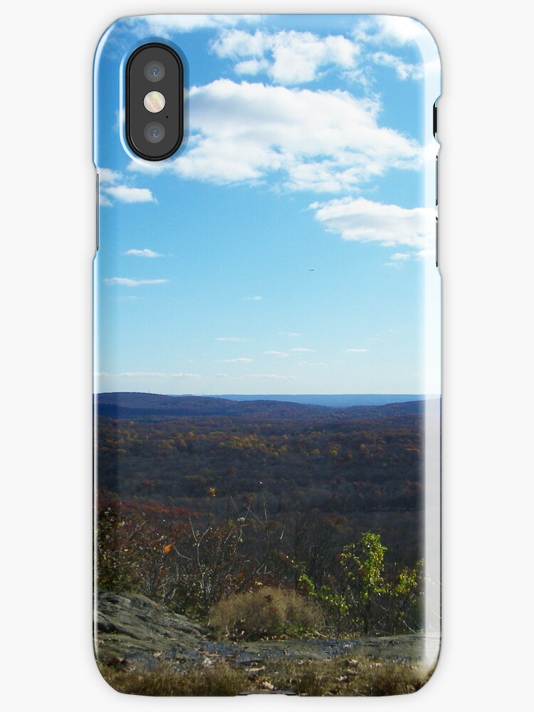 Hawkwatch (iPhone Case) by William Brennan