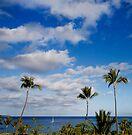 Kāʻanapali by Alex Preiss