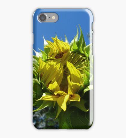 iPhone Case ~ Sunflower Bud iPhone Case/Skin