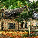 That Old House by Chelei