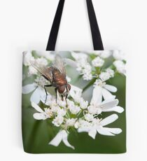 Common housefly Tote Bag