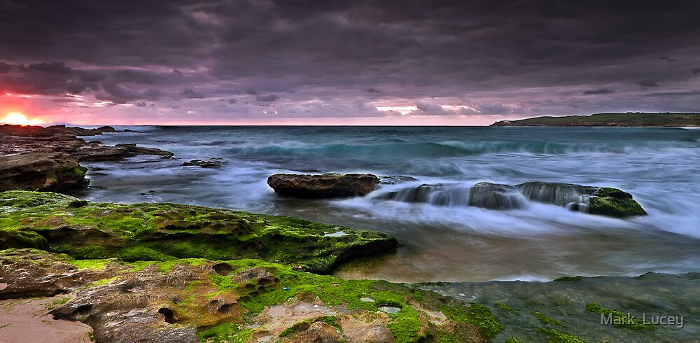 Unsurpassed Motion by Mark  Lucey
