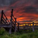 Cattle Ramp Sunset 2 by Scott Sheehan