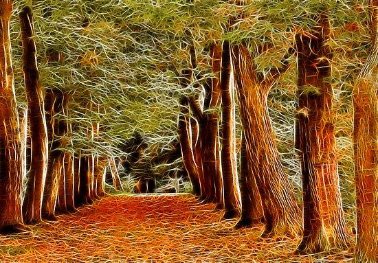 Fractalius Autumn Walkway by Trevor Kersley