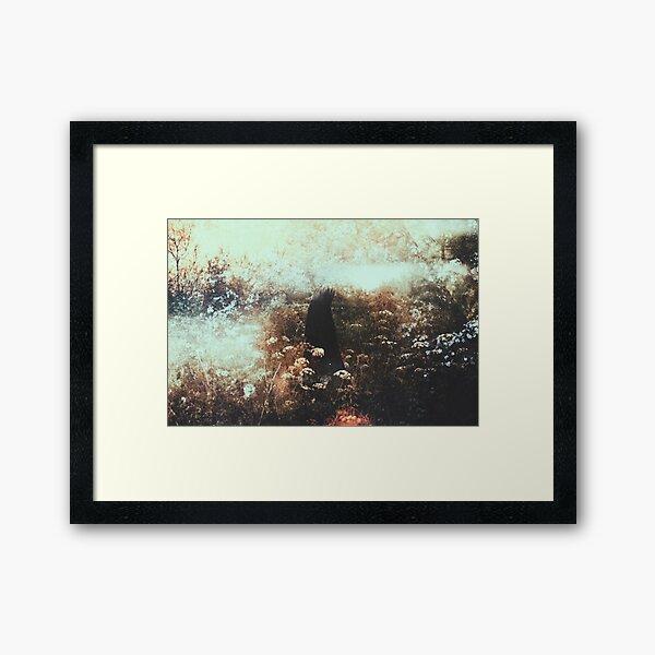 Le Roi Sauvage Framed Art Print