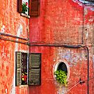 Three windows - One round by Silvia Ganora