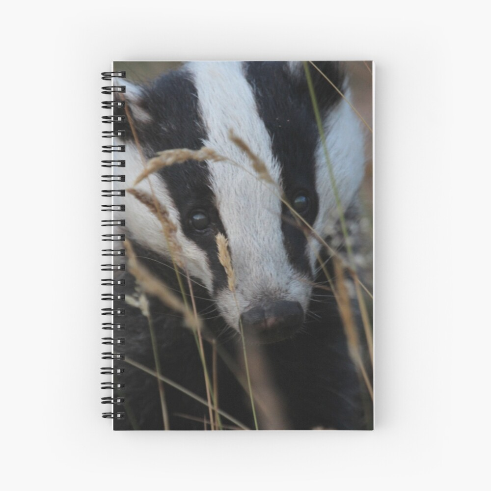Badger hide and seek Spiral Notebook