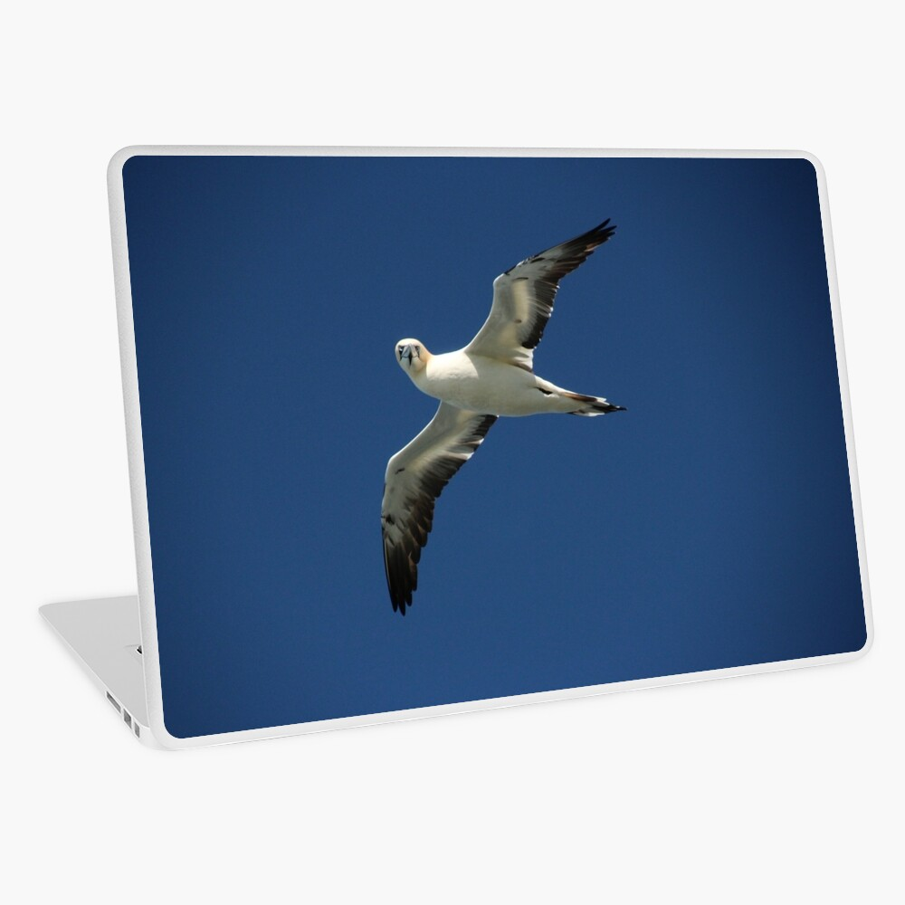 Flypast Laptop Skin