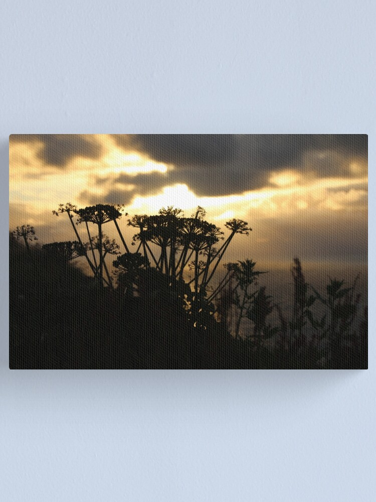 Alternate view of Sunset blossom Canvas Print