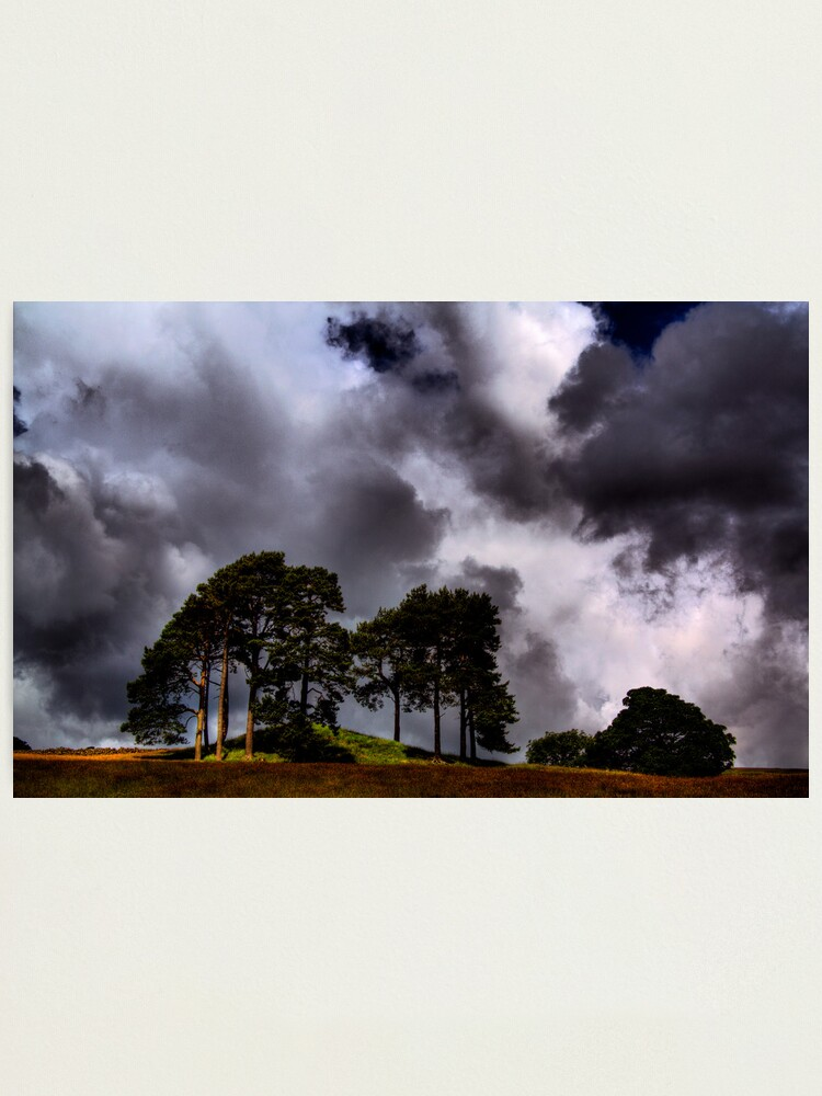 Alternate view of The Lonesome Pines Photographic Print