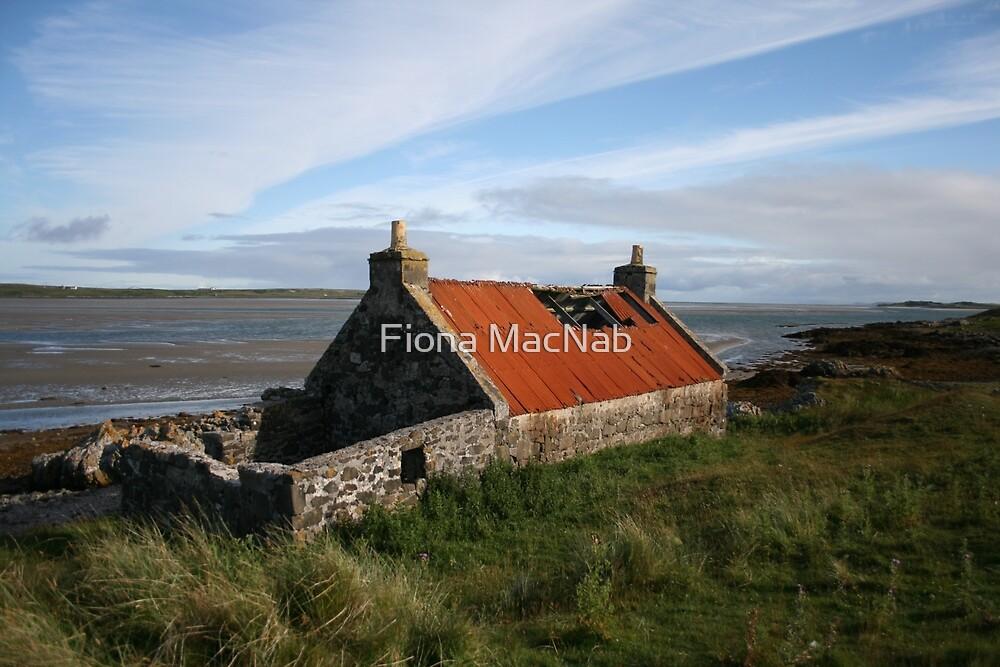 Rusty roof by Fiona MacNab