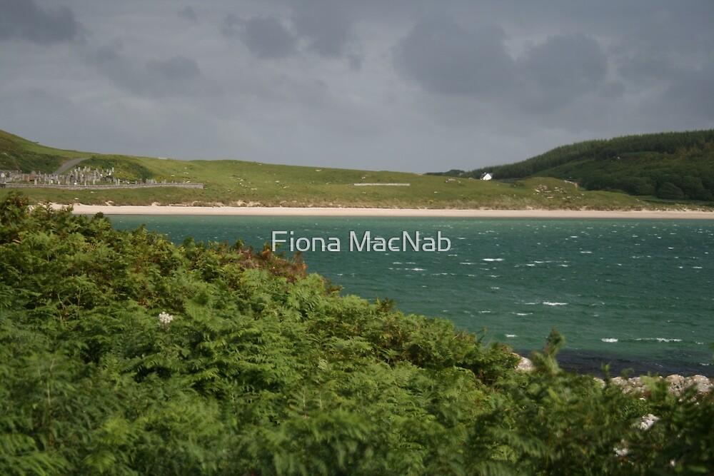 Blue-green sea by Fiona MacNab