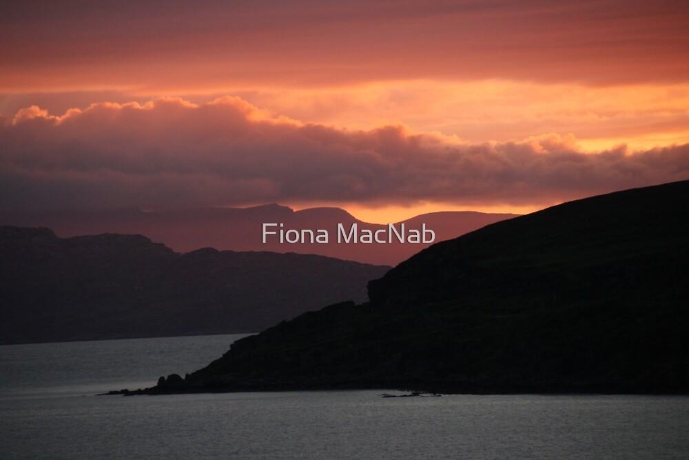Sun glow by Fiona MacNab