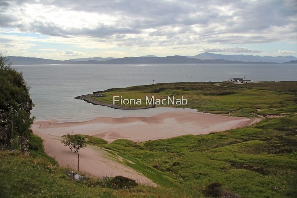 Monty's beach by Fiona MacNab