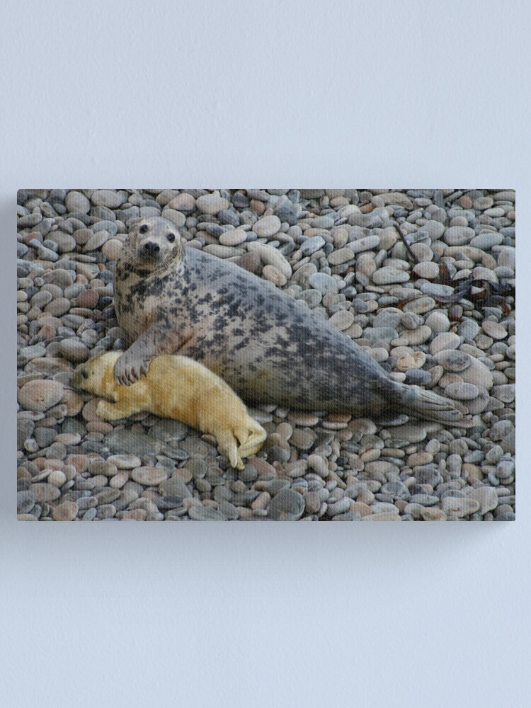 Alternate view of Mother Love II Canvas Print