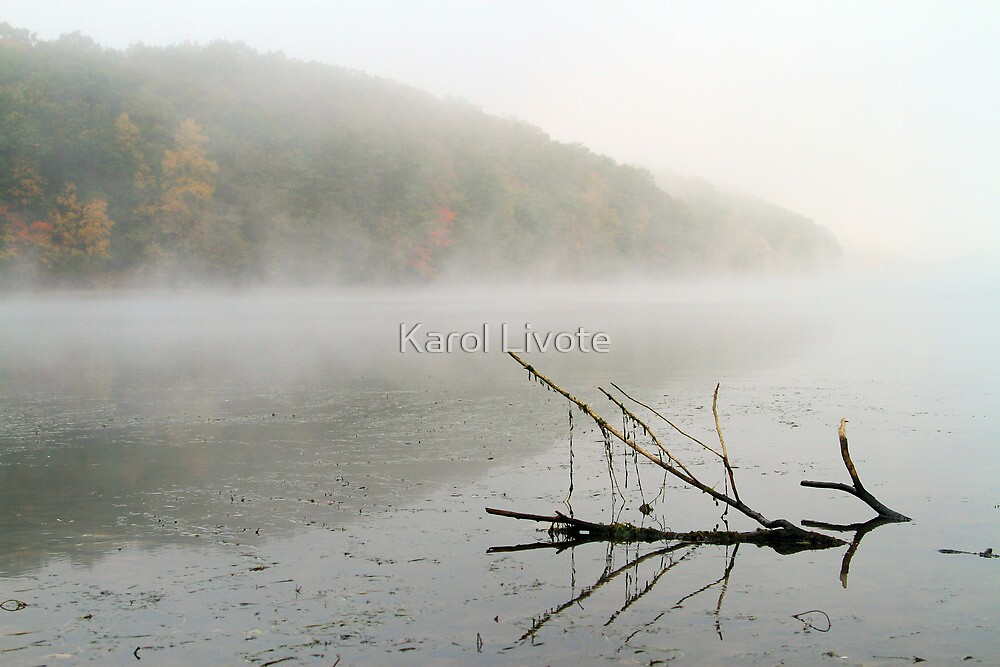 Early Autumn Morn by Karol Livote