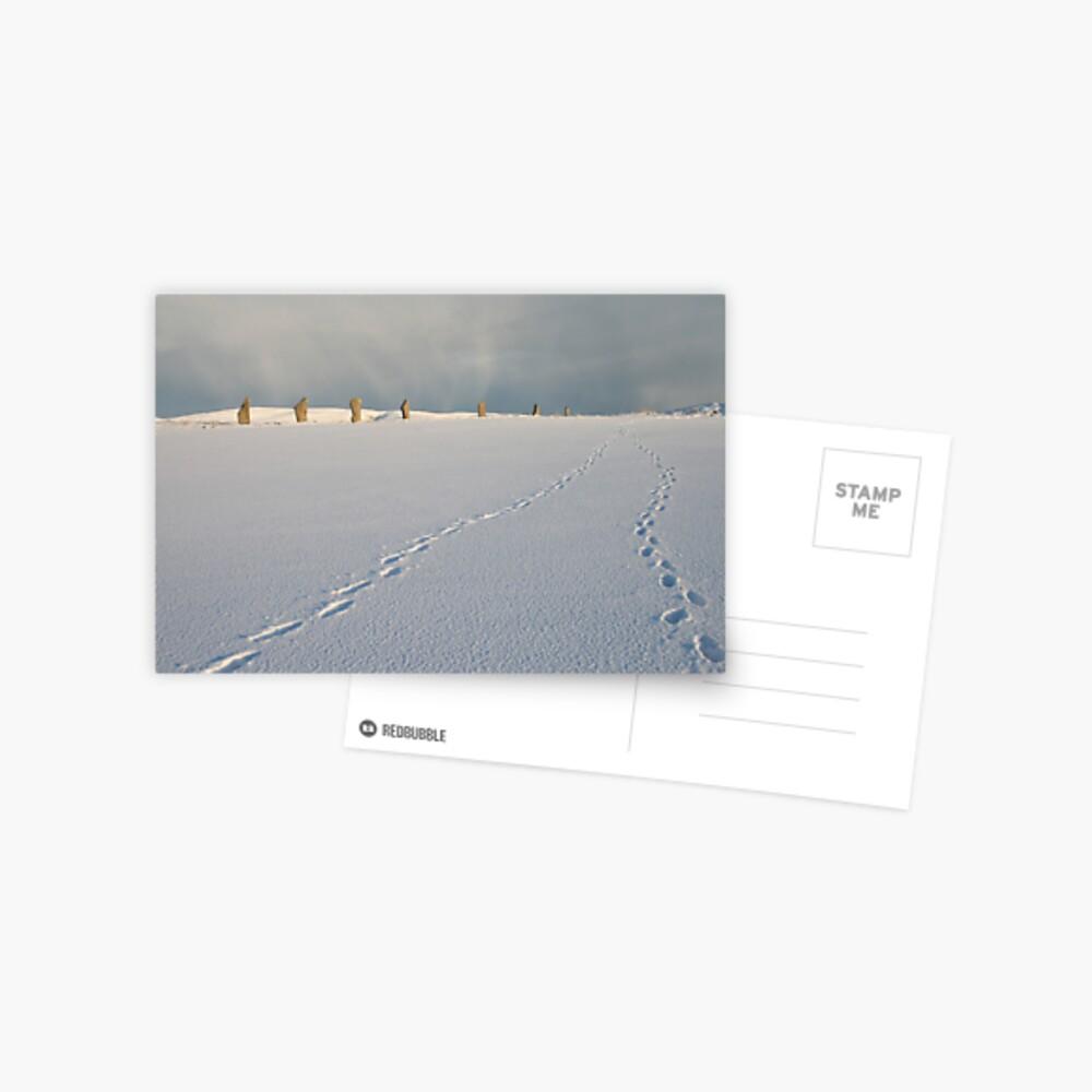 Footprints in the snow Postcard
