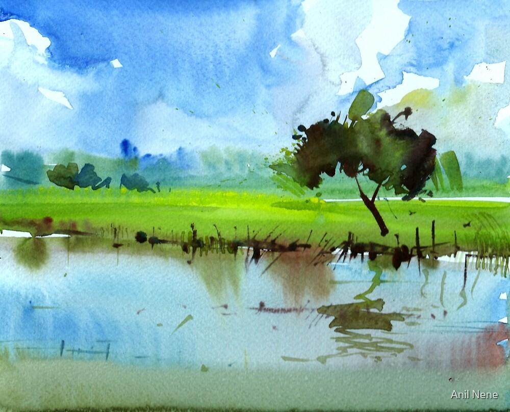 Sky N Farmland by Anil Nene