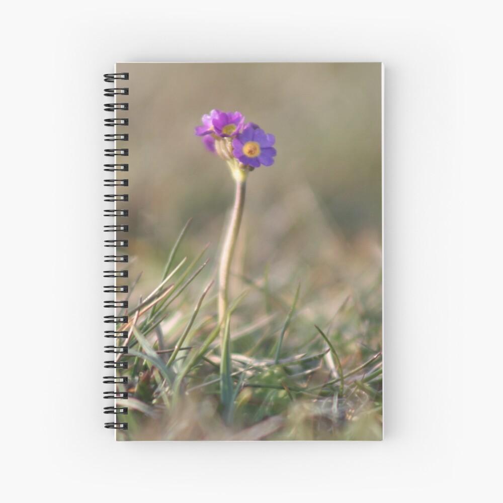 Primula Scotica Spiral Notebook