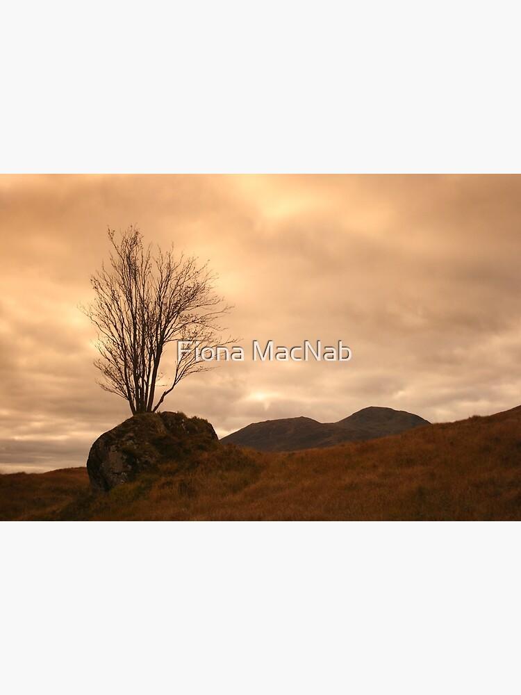 Rannoch Moor by orcadia