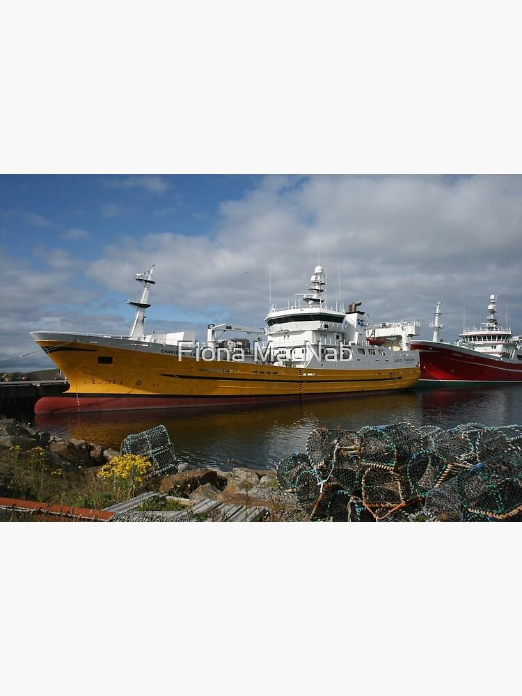Pelagic fleet by orcadia