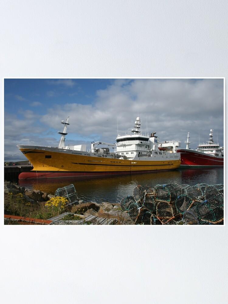 Alternate view of Pelagic fleet Poster