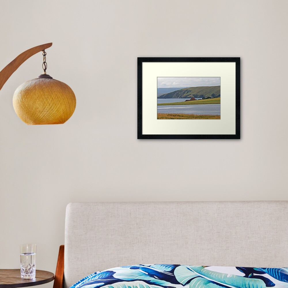 Shetland Framed Art Print