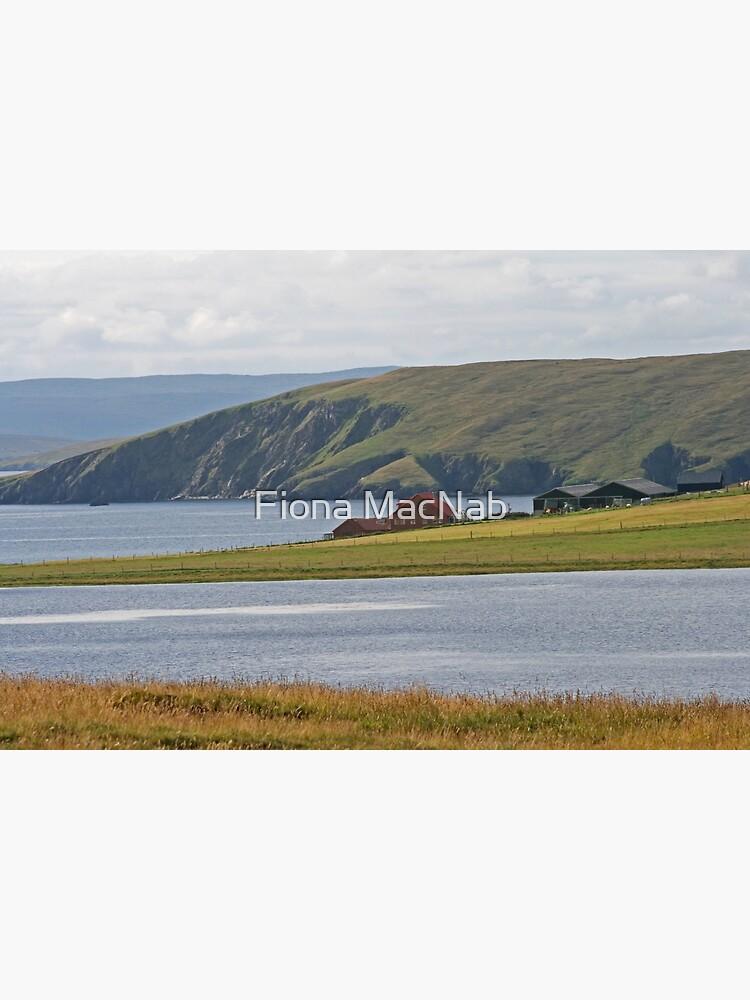 Shetland by orcadia