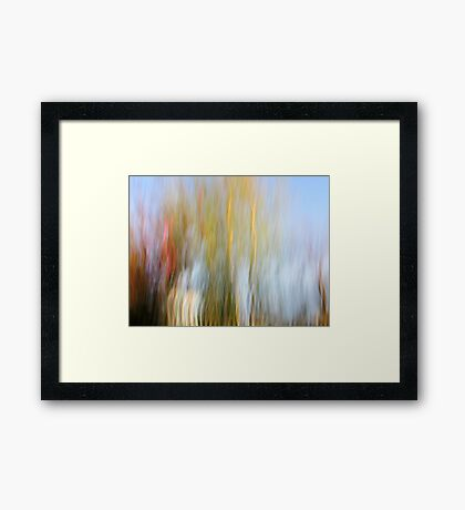 The Front Yard Framed Print