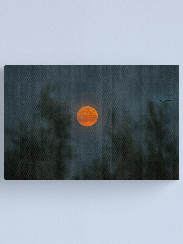 Alternate view of Midsummer's Moon Canvas Print