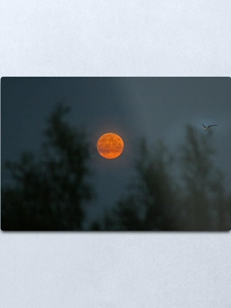 Alternate view of Midsummer's Moon Metal Print