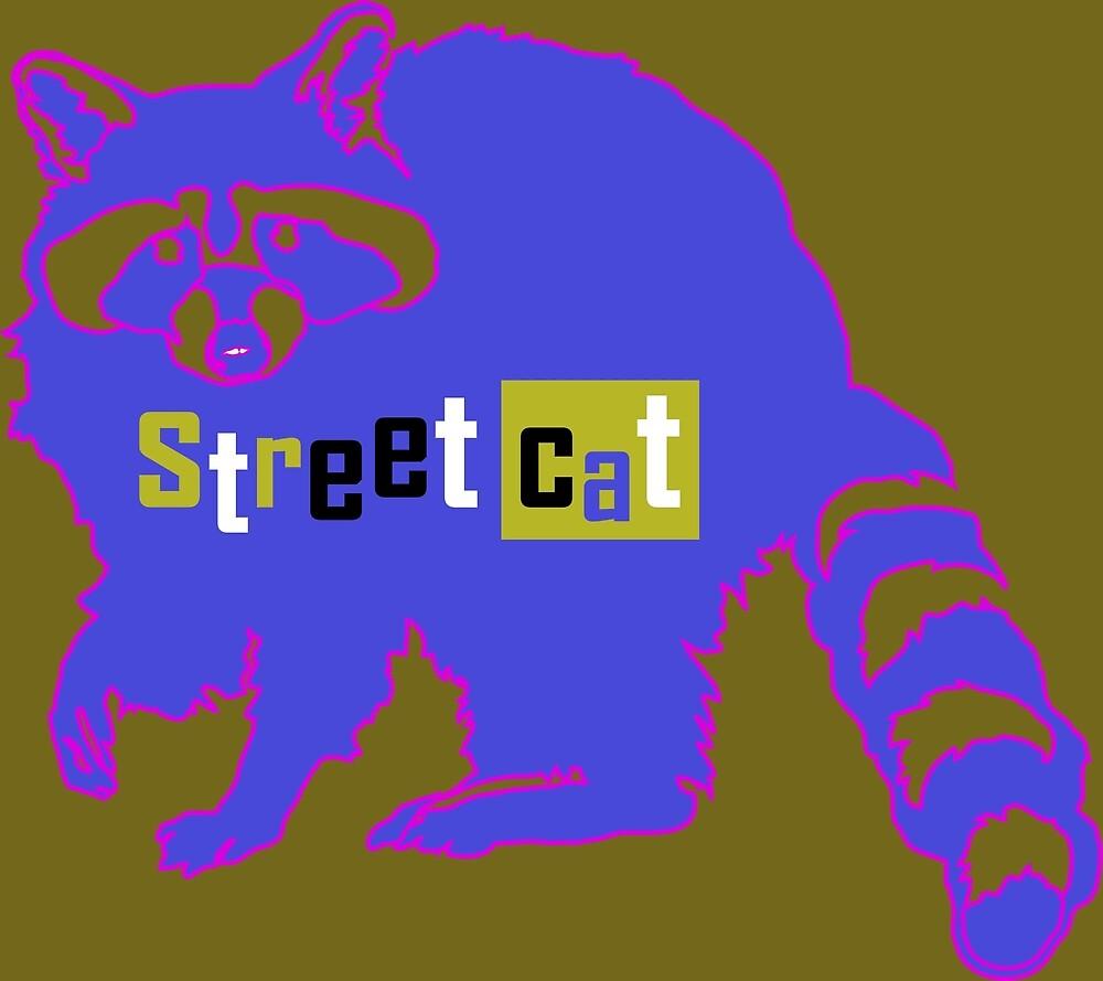 Raccoon Street Cat by James Hindermeier
