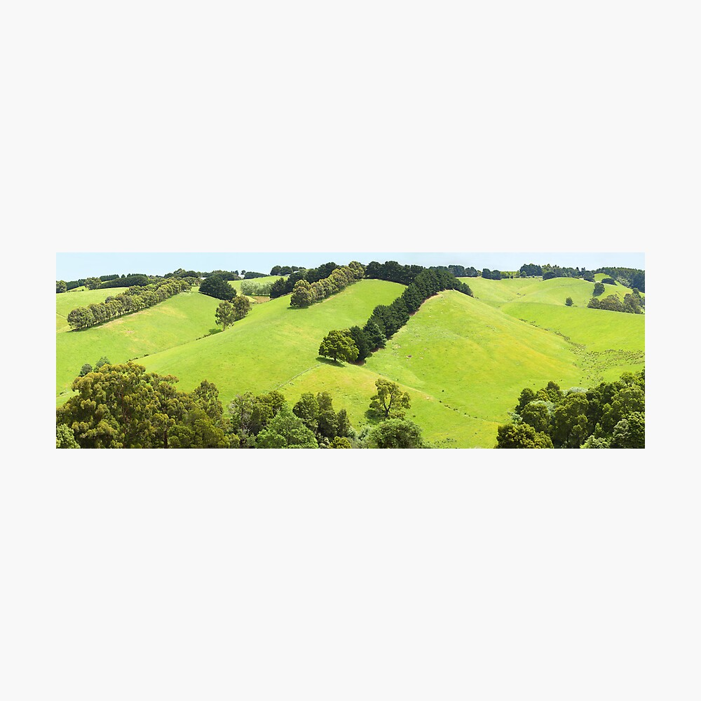 Rolling Green Hills, Gippsland, Australia Photographic Print