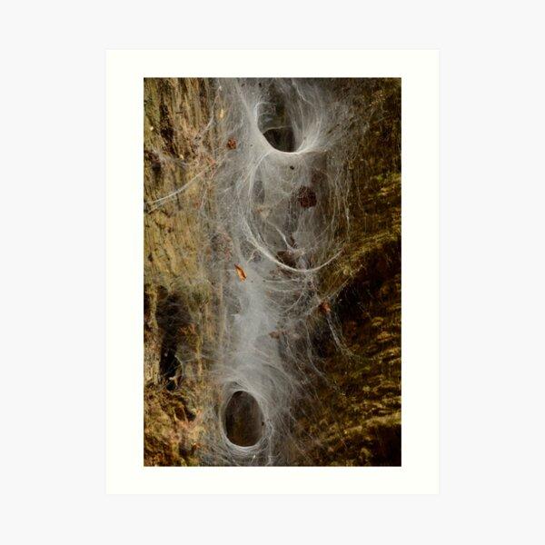 Website. Art Print