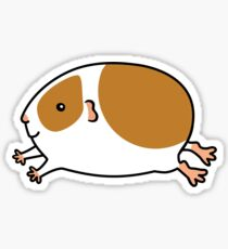 Smooth Leaping Guinea-pig ... Brown and White Sticker