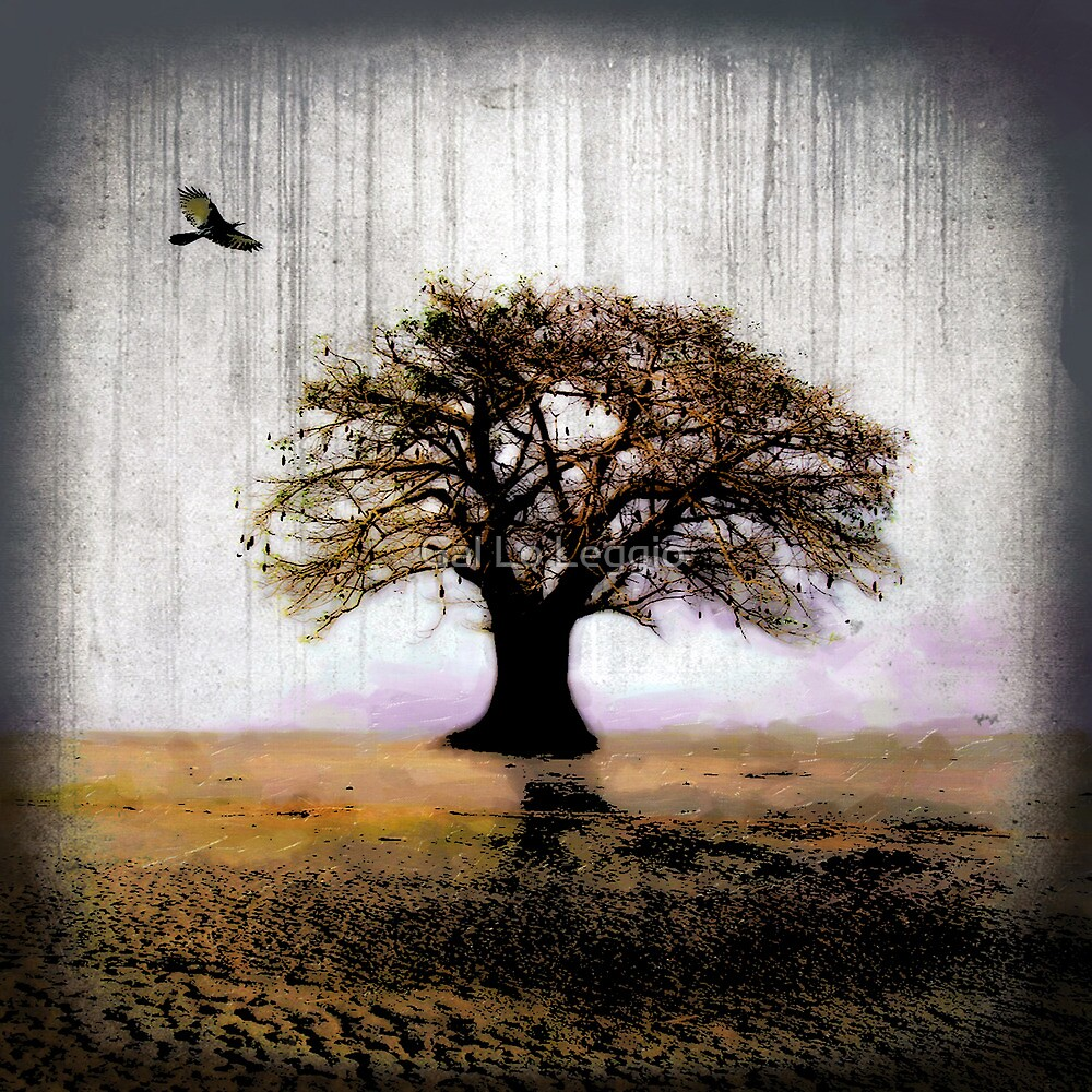 Desolate II by Gal Lo Leggio