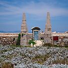 Cemetiery on Lavezzi Island by Alessandra Antonini