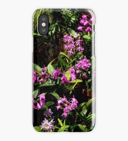 Botanical 2 iPhone Case iPhone Case/Skin