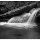 Delicate Cascade Oct 2011 by Aaron Campbell