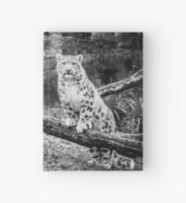 Snow Leopard Cubs Hardcover Journal