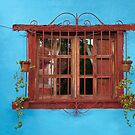 Red window blues by Richard G Witham