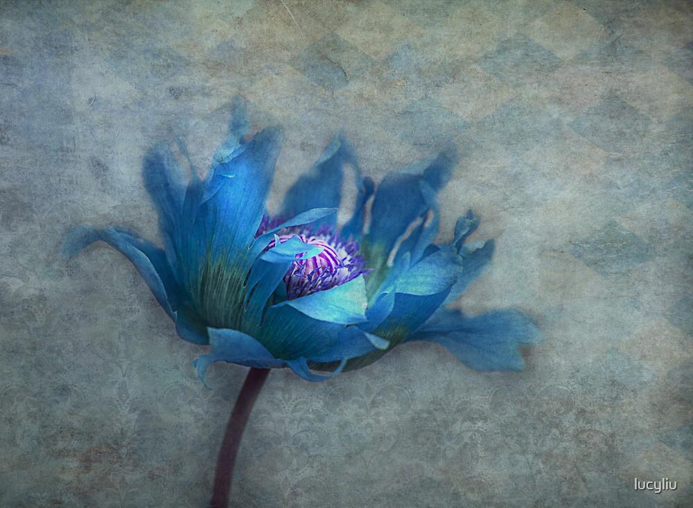 blue papaver by lucyliu