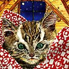 Kitten in a Quilt by EllenCoffin