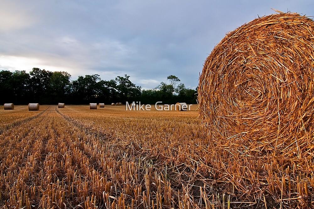 Hay Bale by Mike Garner