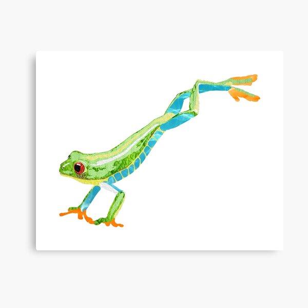 Frog - Laudea Martin Canvas Print