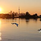 Sunrise Over Toronto by NewfieKeith