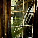 0640 The Window by DavidsArt