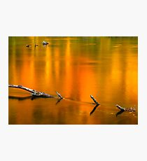 Autumn Reflections on the Holston River Photographic Print