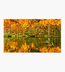Reflections of Fall Photographic Print
