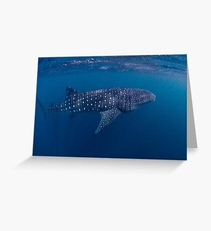 Giant from the Deep, Ningaloo, Western Australia Greeting Card